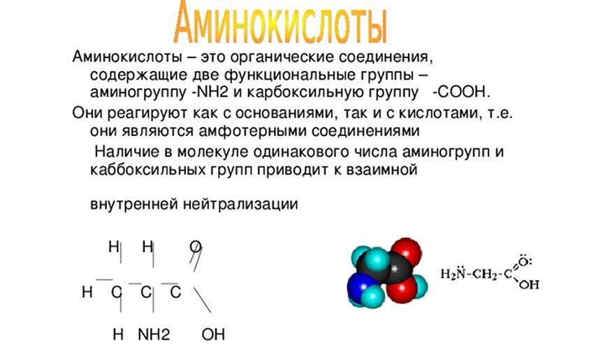 Аминокислоты – это органические соединения