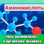 Роль аминокислот в организме человека